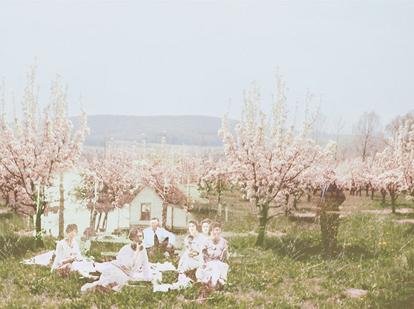 Walter at the Cherry Blossom Picnic, from the series, Enter the Great Wide Open. © Aislinn Leggett.