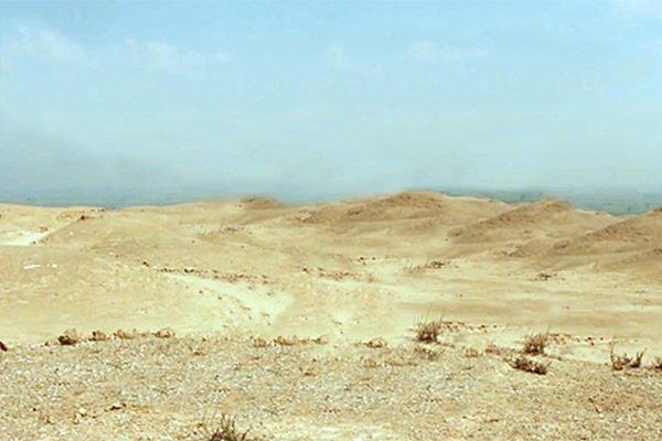 #1 Landscape-James Foley_40inch