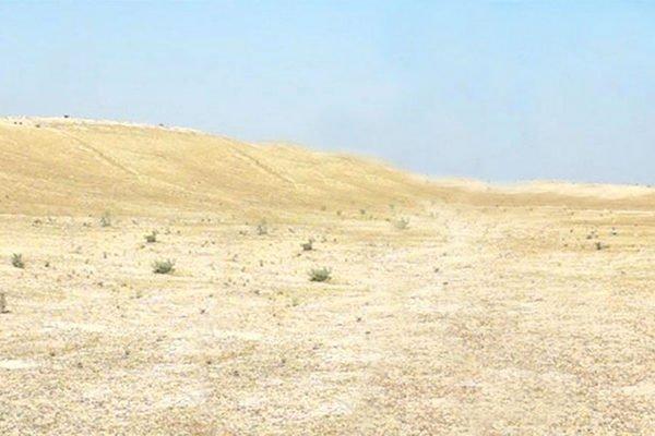 #2 Landscape-Steven Sotloff_40inch