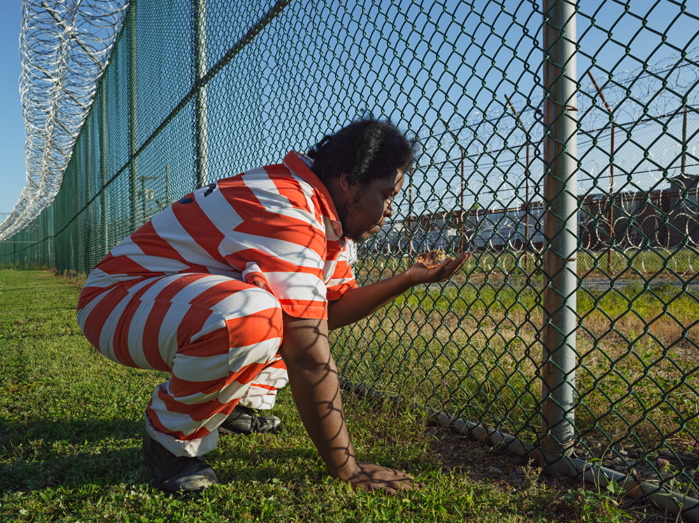 Troy Holding a Guinea Fowl Chick, GreenHouse Program, Rikers Island Jail Complex, New York 2014. © Lucas Foglia and courtesy Fredericks & Freiser Gallery, New York.