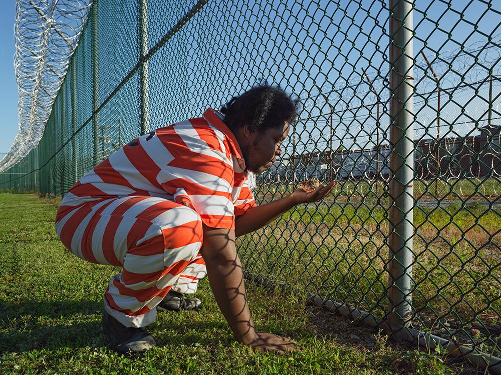 Troy Holding a Guinea Fowl Chick, GreenHouse Program, Rikers Island Jail Complex, New York 2014. © Lucas Foglia and courtesy Fredericks & Freiser Gallery, New York.