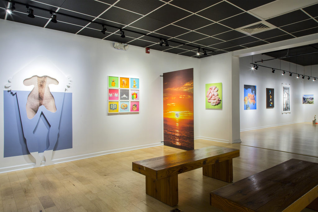 Installation view of n e w f l e s h at The Light Factory, August 29 – October 11, 2019. © Eric Pickersgill