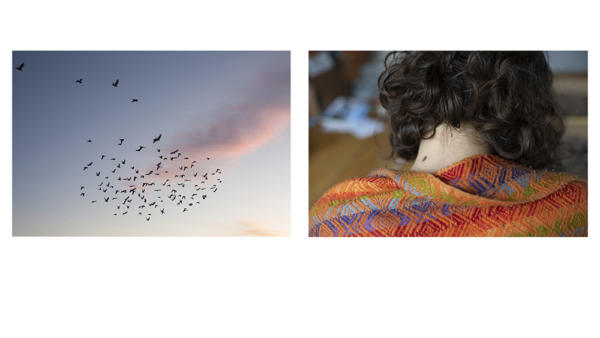 Jessica Eve Rattner. Untitled diptych from the series The End is Where We Start From, 2020.