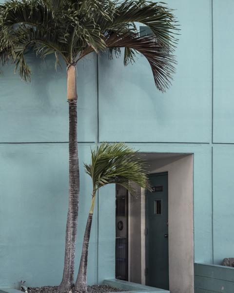 Karen Baker. Summer Villa, 2019 .